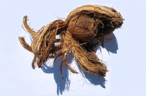 Notenallergie: mag je kokosnoot eten?