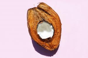 Is de kokosnoot een noot, een zaad of een vrucht?