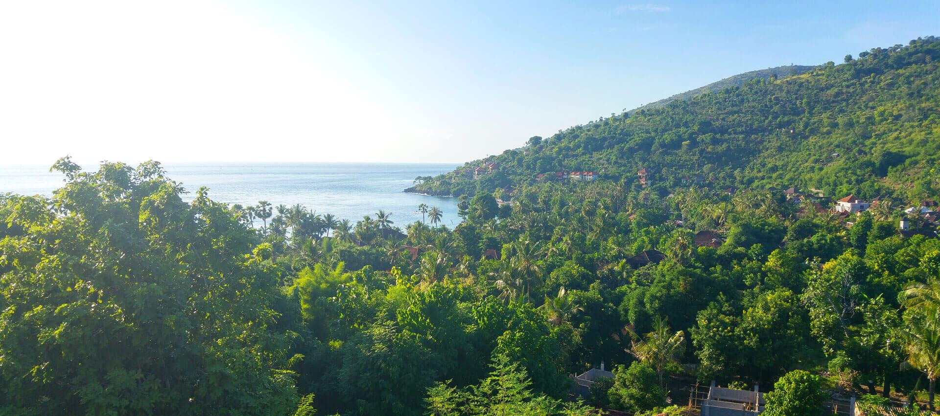 Beach, palmtrees and jungle in Bali