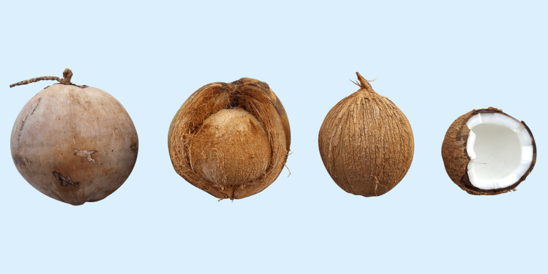 Coconut oil uses for your skin, hair, nails and mouth