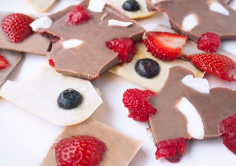 Chocolate bark with forrest berries and coconut