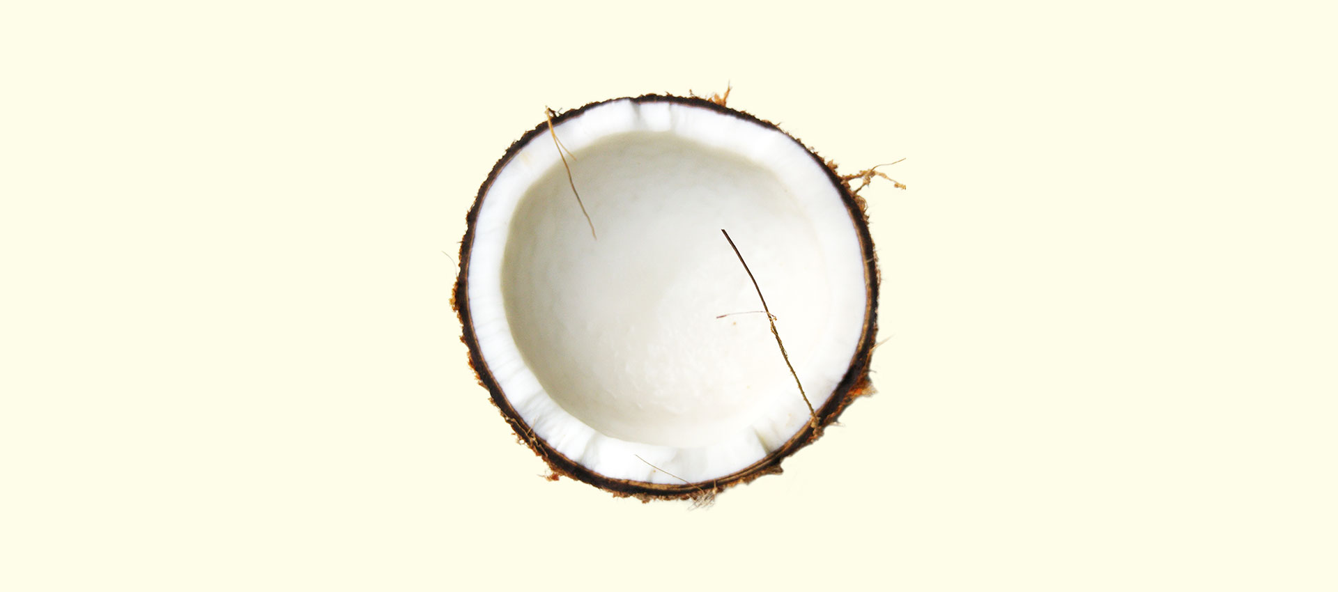 The power of coconut oil for your hair and scalp