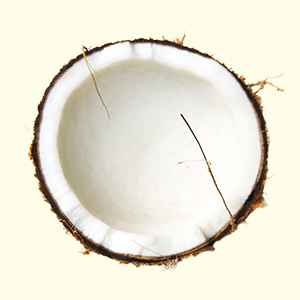 Coconut oil for your hair - why you should start using it if you haven't yet