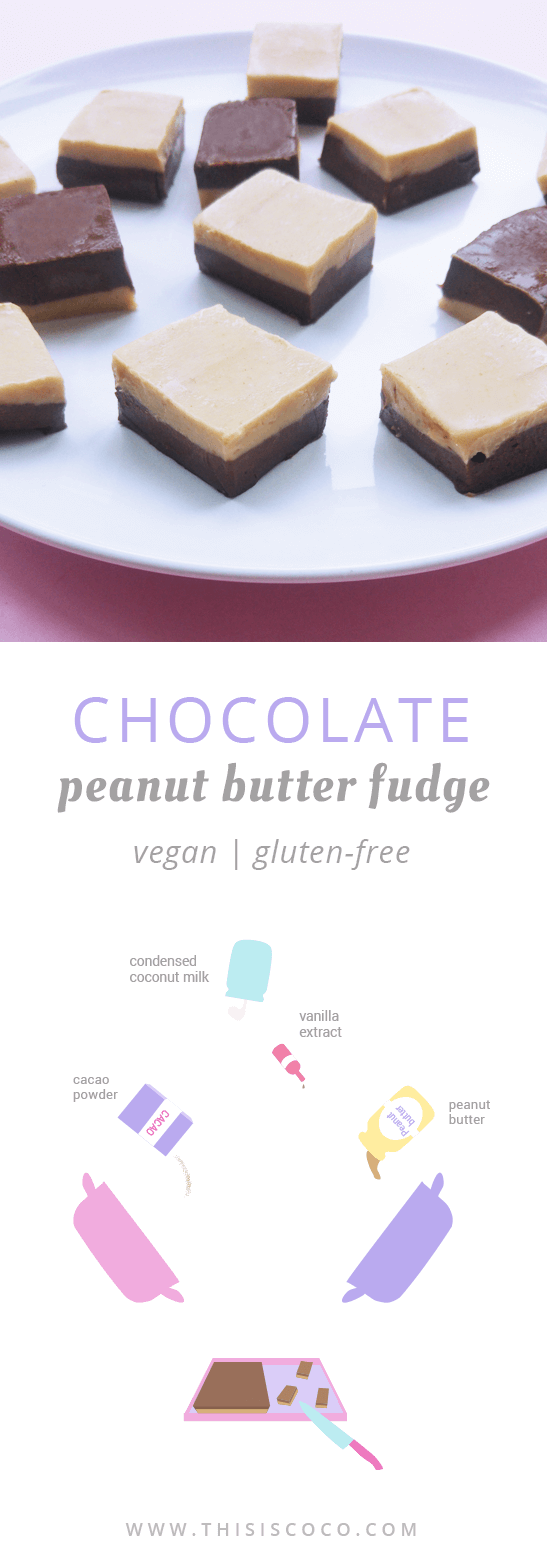 Vegan chocolate peanut butter fudge with coconut milk