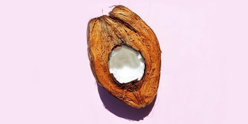 Is de kokosnoot een noot